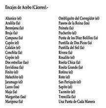 Tipos de encaje de bolillos en Acebo. www.sierradegatadigital.es
