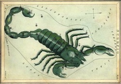 Junio. Scorpius constellation